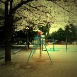 iphone 桜